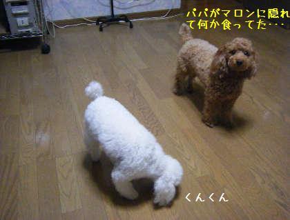 2008_09250026.jpg
