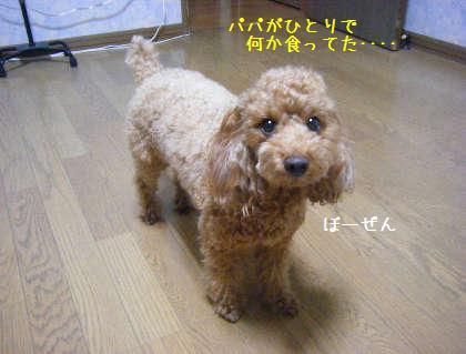 2008_09250029.jpg