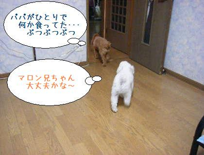 2008_09250035.jpg