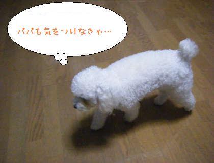 2008_09250038.jpg