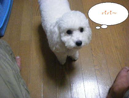 2008_09250039.jpg