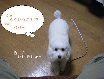 2008_09250047.jpg