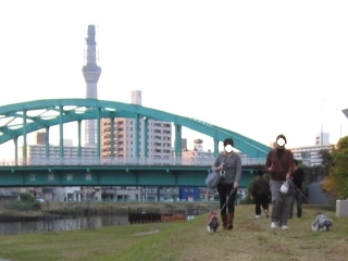 20101119m04.jpg