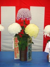 切花組花の部日本一