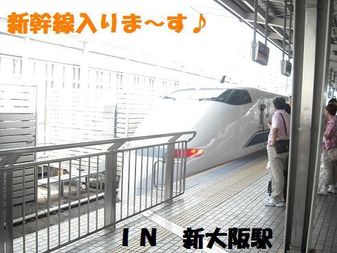 2008_08290003.jpg
