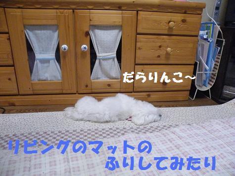 2008_09080001.jpg