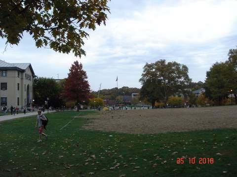 20101025CMUキャンパス