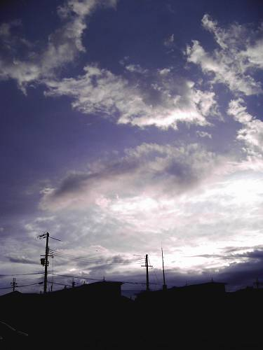 IMAG7469-s.jpg