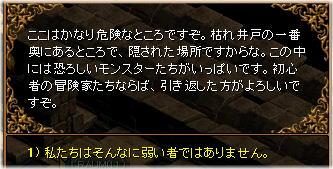 1kareido_3.jpg