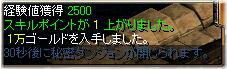 kareido_4.jpg