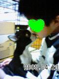 20060420085635.jpg