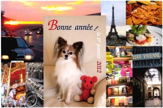 Bonne annee! le 1er janvier 2012