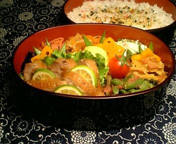 鶏肉のハニージンジャー煮