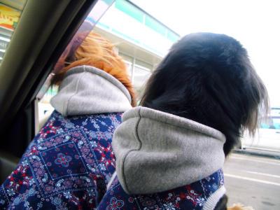 2007-3-21メィ&ゆめ