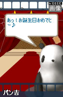 081007blogpet19.jpg