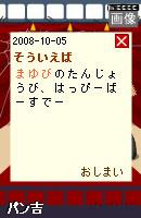 081007blogpet24.jpg