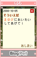 081007blogpet35.jpg
