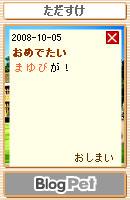 081007blogpet36.jpg