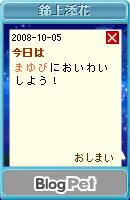 081007blogpet37.jpg