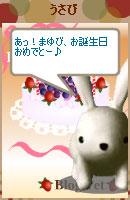 081007blogpet39.jpg