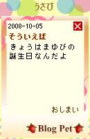 081007blogpet40.jpg