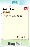 081222usabi10.jpg