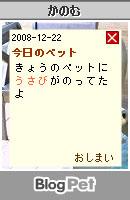 081222usabi13.jpg