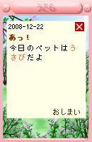 081222usabi14.jpg