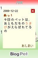 081222usabi17.jpg