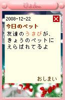 081222usabi18.jpg