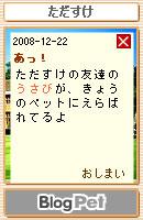 081222usabi19.jpg