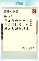 081222usabi2.jpg