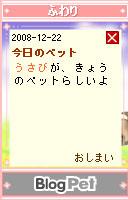 081222usabi4.jpg