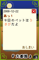 081222usabi5.jpg