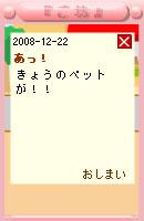 081222usabi6.jpg