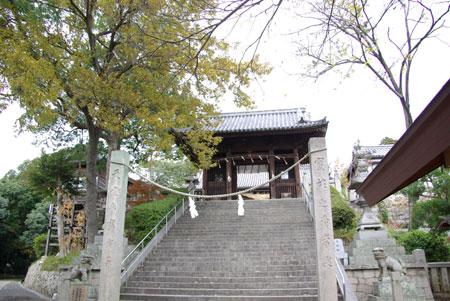 081227okayama10.jpg