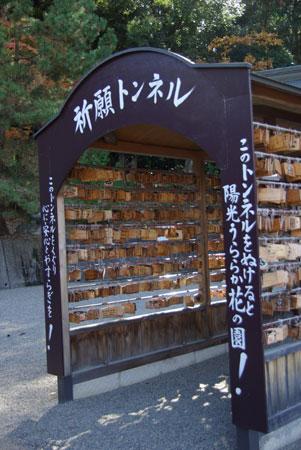 090119okayama17.jpg