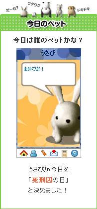 090129usabi1.jpg