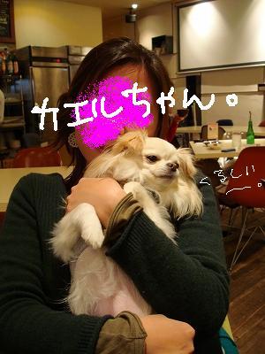 かえるとばぐたみ (11)