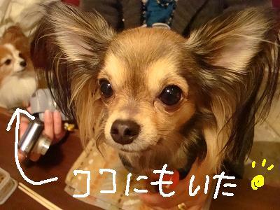 忘年会ラスト! (27)