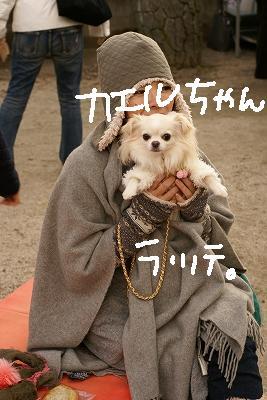 京都・百万遍 (42)