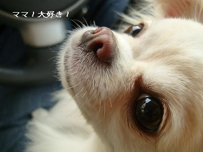 EVOKE撮影会 (59)