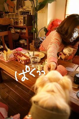 さよならニーシュ (103)
