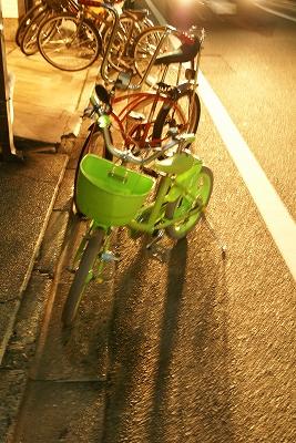 2009-03カエルwマイマイ (58)