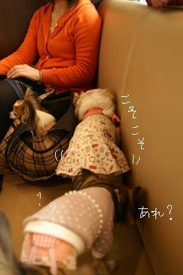 200904デリシュ&MMC (42)