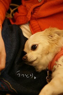 200904デリシュ&MMC (58)