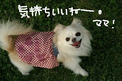 200904宝塚MOBYDICK (78)