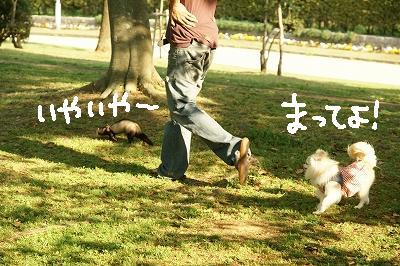 200904宝塚MOBYDICK (86)
