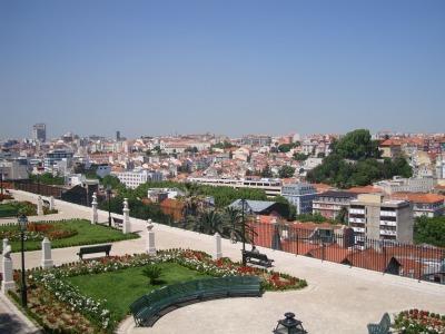 ポルトガルD (86)