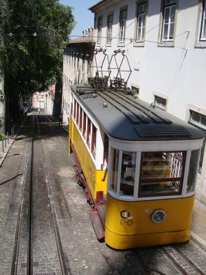 ポルトガルD (89)